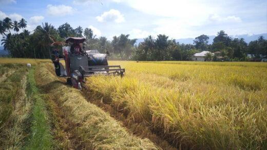 Kolaborasi Nestlé dengan Petani dalam Pembangunan Pedesaan